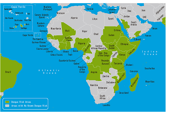 地図3-02.デング熱流行地域(アフリカ・中東)